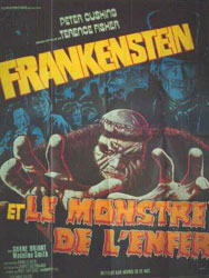 Frankenstein And The Monster From Hell Poster 2