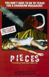 Pieces Poster 1