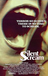 The Silent Scream Poster 1