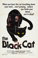 The Black Cat Poster 1