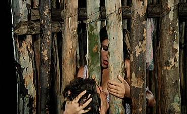 Amazon Jail / Амазонская Тюрьма (a.k.a. Curral de Mulheres) (1982)