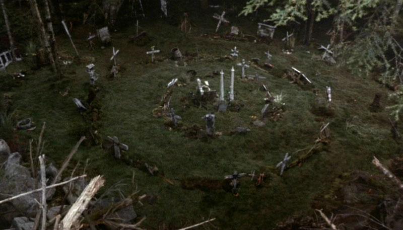 Кладбище домашних животных появится