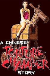 Chinese Torture Chamber Story Video Cover 2