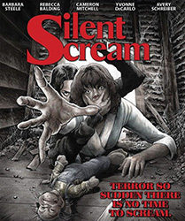 The Silent Scream Video Cover 2