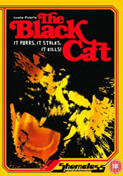 The Black Cat Video Cover 1