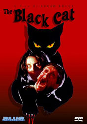 The Black Cat Video Cover 2