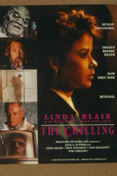 The Chilling Video Cover 3
