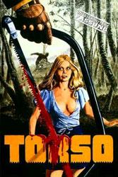 Torso Video Cover 4